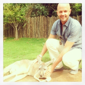 ima, one of 17 new red kangaroos at the nashville zoo